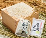 魚沼産コシヒカリ・魚沼産コシヒカリ玄米
